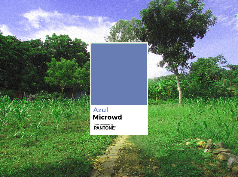 Azul Microwd